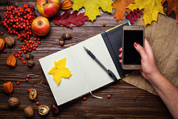 girl holding a phone, notebook, pen and telephone in autumn still life, fall leaves, gifts of autumn,  wooden background, walnuts, maple leaves - autumn composition from top. Colorful autumn leaves