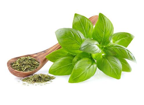 Fresh basil leaves with dry basil