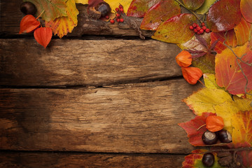 Wooden autumn background with colorful leaves