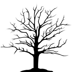 Simple drawing tree silhouette, isolated illustration on white background. Vector design.