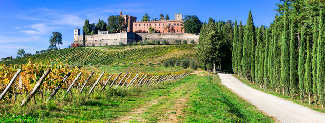 Foto op Canvas Toscane Castello di Brolio with biggest wineyards in Chianti region of Tuscany