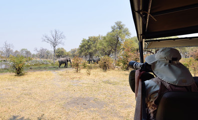 A tourist taking photographs of elephant in Africa
