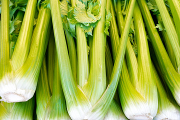 Celery bunches displayed at a farmers market. Close up detail