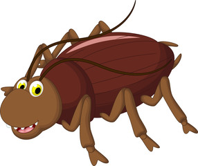 cockroach cartoon for you design