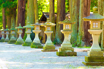 Traditional Japanese Stone Lanterns Shaded Path