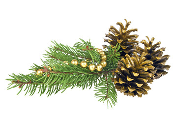 Golden pine cones and needles, close up
