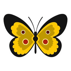 Butterfly icon. Flat illustration of butterfly vector icon for web