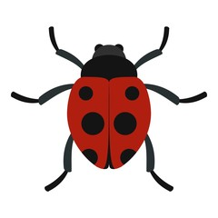 Ladybug icon. Flat illustration of ladybug vector icon for web