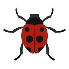 Ladybug icon. Flat illustration of ladybug vector icon for web
