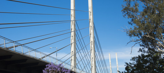 View of the Eleanor Schonell Bridge in Brisbane, Queensland during the afternoon.