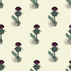 Seamless pattern with thistle