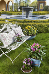 decorative arrangement of potted plants outdoor