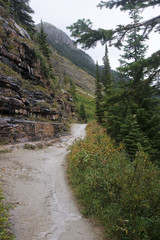 The trail to the Plain of Six Glaciers Tea House from Lake Louis