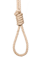 Bankrupt concept. Hangman's noose isolated on a white background, a symbol of death.