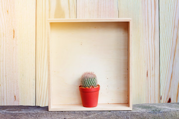 Natural Cactus plant in wood frame with wooden background, Selective and soft focus. Front view