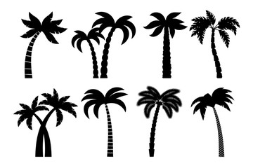 Palm tree black set. Vector drawing palma trees silhouettes isolated on white background design
