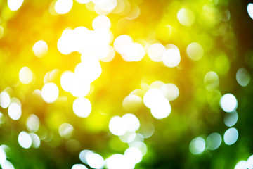Green bokeh background with warm sun flare