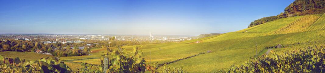 Weinberg Panorama über Heilbronn