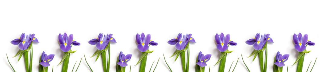 Deurstickers Iris fresh burgundy irises