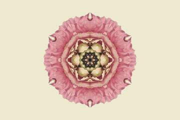 Flower mandala against white background