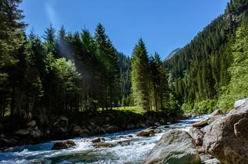 Bergbach durch einen Wald