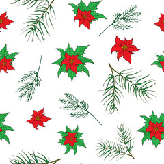 New Year and Christmas hand drawn plants, poinsettia flowers and pine branches seamless pattern background. Vector Illustration isolated on white.