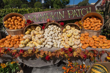 Pumpkin patch at fruit,vegetable stand display at farm,farmer ma