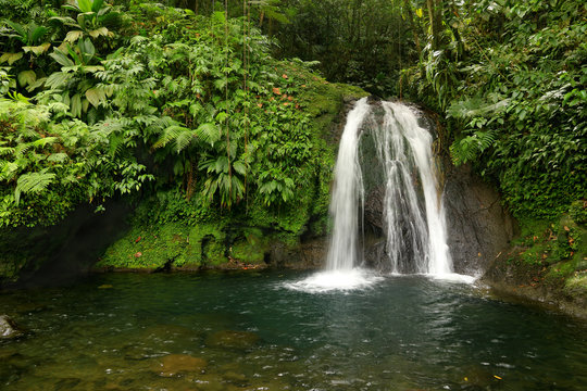 Beautiful waterfall in a rainforest. Cascades aux Ecrevisses, Guadeloupe, Caribbean Islands, France