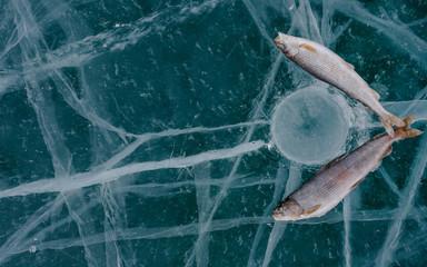 Winter fishing on the lake.
