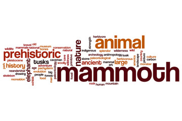 Mammoth word cloud