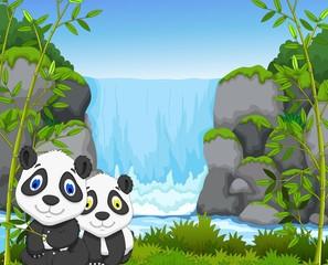 funny cartoon panda with waterfall background