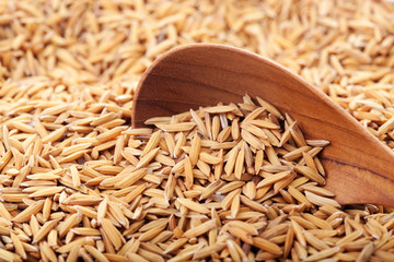 food background. rice grain in a wooden spoon and forming a background. with copyspace