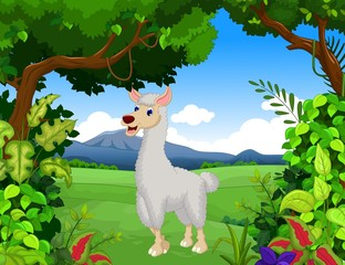 cute lama cartoon with forest landscape background