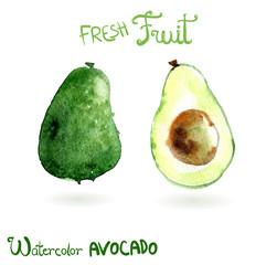 Bright vector watercolor hand drawn fruit avocado