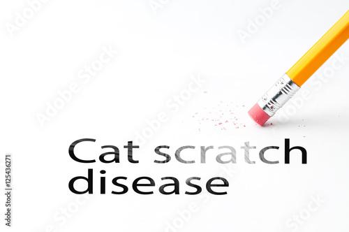 u0026quot closeup of pencil eraser and black  at scratch disease text  cat scratch disease  pencil with