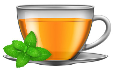 Cup of green herbal tea with mint. Vector illustration.