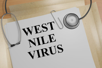 West Nile Virus - medical concept