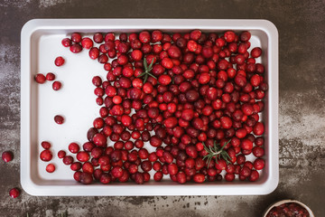 Fresh cranberries on a baking tray
