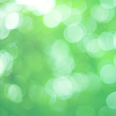 Natural Green Bokeh