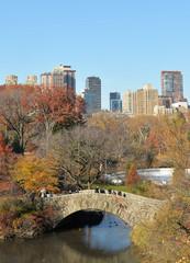 Central Park Brücke