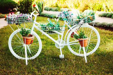 A decorative white colored bike with flower pots on the grass and a nice alley on the background. Decorative bicycle with flowers on grass