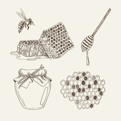 Retro illustrations of elements: honeycomb, bee, honey dipper and jar. Vector vintage set in woodcut style.