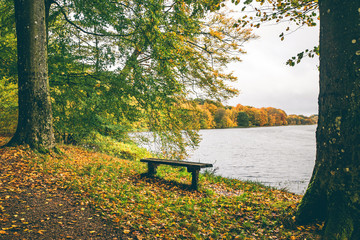 Autumn landscape with a small wooden bench