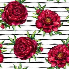 Seamless pattern watercolor flower peony marsala on black striped background, watercolour floral and stripy seamless background of red peony for womens day, wedding, card, holiday, textile, invitation