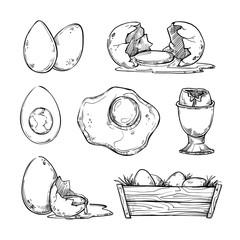 Hand drawn vector illustration - Set of eggs. Scrambled egg, omelet