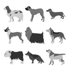 Dogs flat set