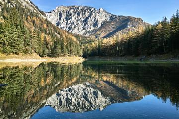 Herbstliche Spiegelung am Grünen See, in Tragöß. Im Hintergrund die Meßnerin