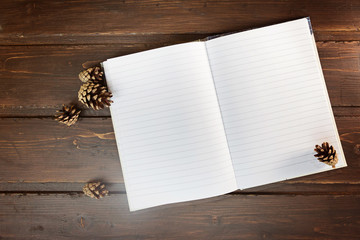 top image of open notebook with blank pages, next to pine cones