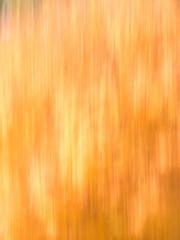 Autumn Blur - Oranges and Yellows