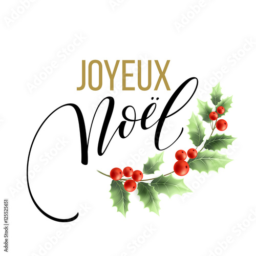 merry christmas card template with greetings in french language joyeux noel vector illustration